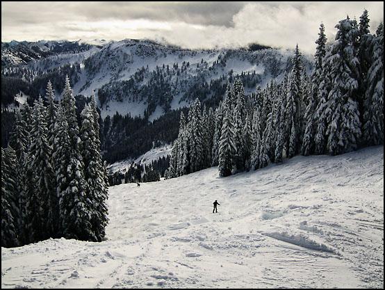 Flott skiterreng ved Stevens Pass