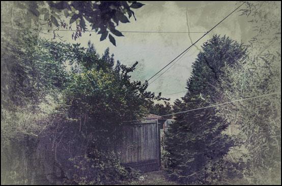 Skumringen senker seg over hagen til Pat